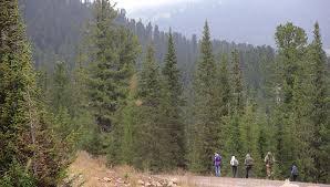Выживает сильнейший. Туристы бросили травмированного члена группы в горах.